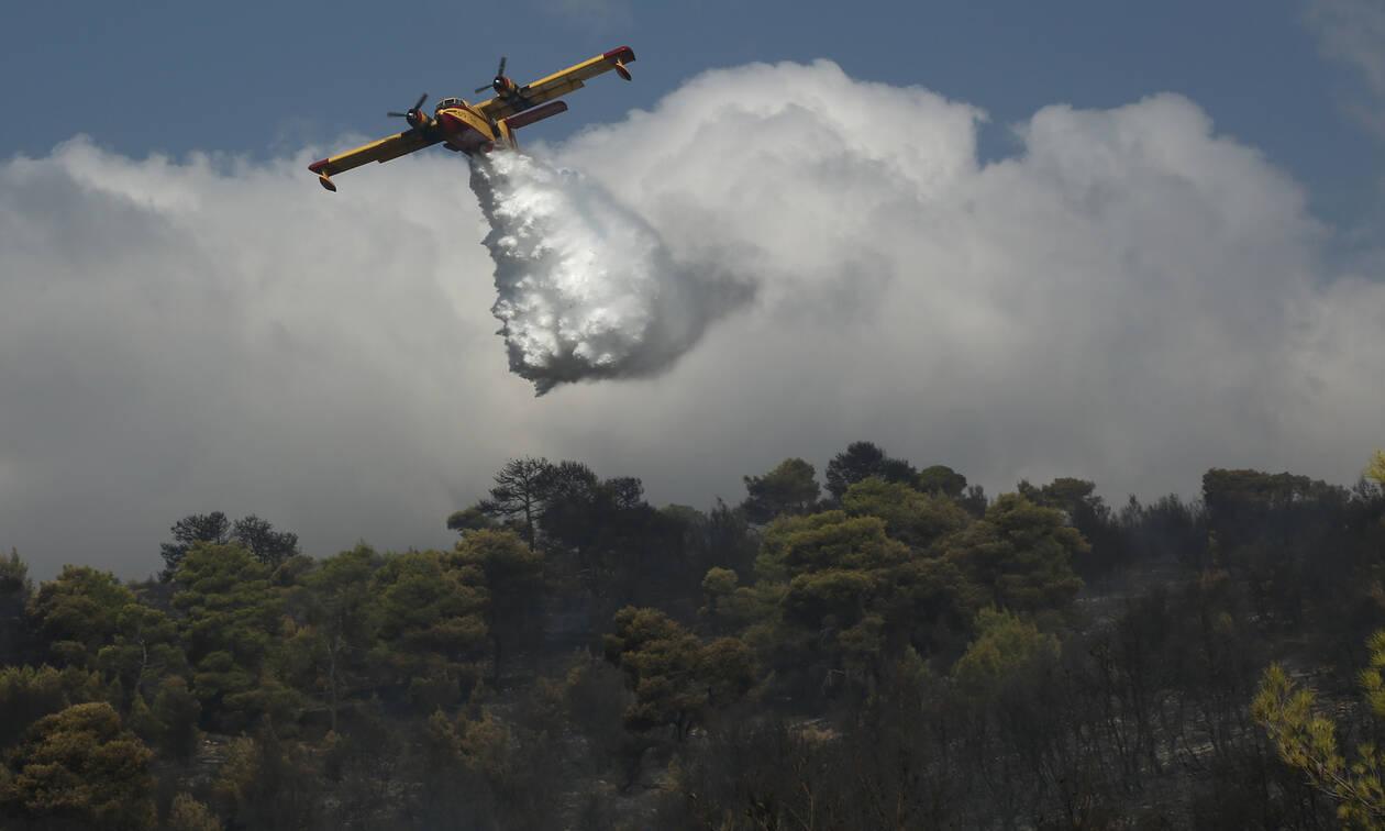 Φωτιά ΤΩΡΑ LIVE: Δείτε πού έχει πυρκαγιές σε όλη τηνΕλλάδα