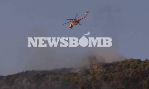 Пожар в Неа Макри удалось взять под контроль