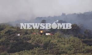 Φωτιά - Νέα Μάκρη: Πληθαίνουν οι καταγγελίες για εμπρησμό - Πώς ξέσπασε η πυρκαγιά