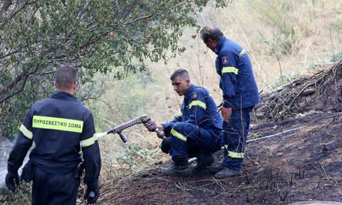 Συναγερμός στην Πυροσβεστική: Φωτιά σε Ασπρόπυργο και Μαρκόπουλο
