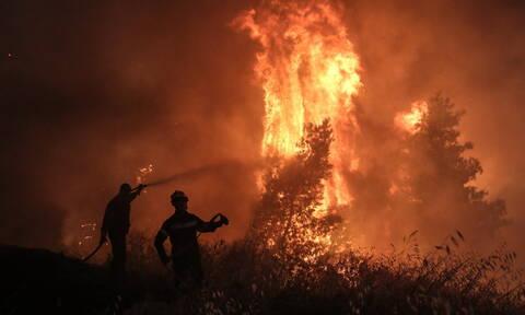 Φωτιά ΤΩΡΑ στην Εύβοια - Πυρκαγιά κοντά στην Κάρυστο