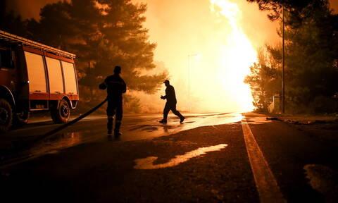 Φωτιά ΤΩΡΑ στην Εύβοια - Πυρκαγιά στο Βατήσι Καρύστου: Ενισχύονται οι πυροσβεστικές δυνάμεις