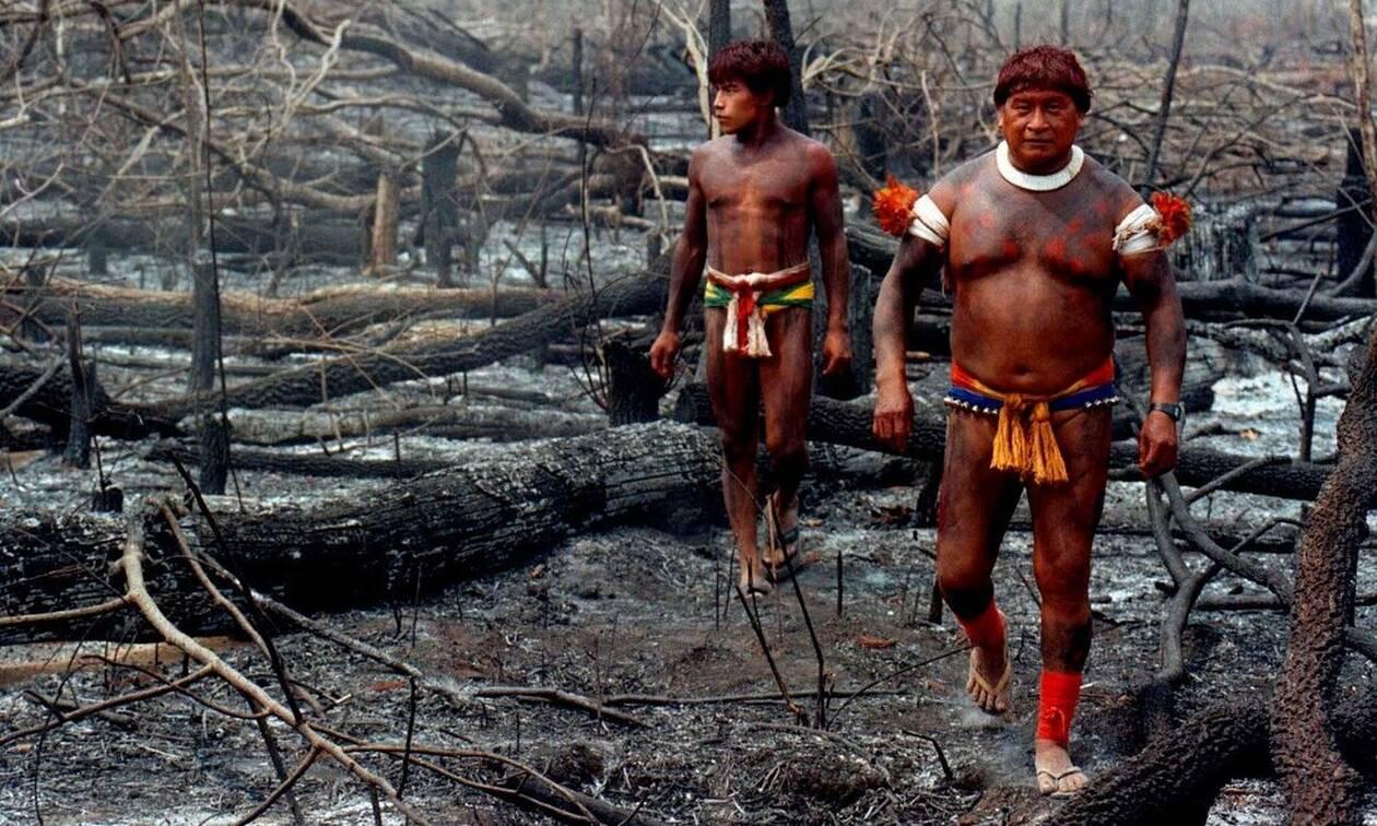 Επτά χώρες της Αμαζονίας υπέγραψαν σύμφωνο για την προστασία του τροπικού δάσους