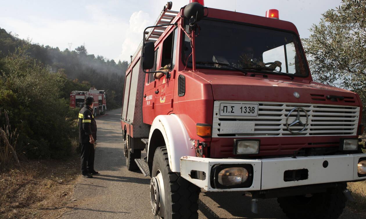 Θεσσαλονίκη: Φωτιά στο δάσος του Σέιχ Σου