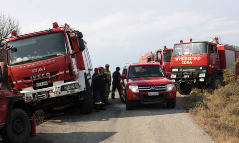 Θεσσαλονίκη: Υπό έλεγχο η φωτιά κοντά στο δάσος του Σέιχ Σου