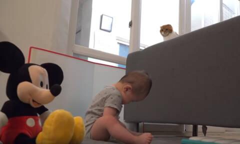 Η μοναδική σχέση που έχει ένα μωρό με τη γάτα του (vid)