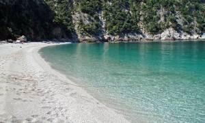 Η παραδεισένια παραλία Θαψά της Εύβοιας - Καταπράσινα νερά δίπλα στο Αιγαίο