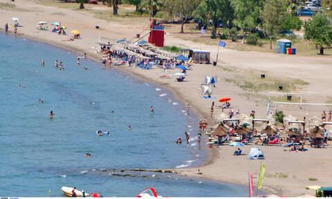 «Πανικός» στο Ναύπλιο: Είδαν τη θάλασσα... κόκκινη - Τι συνέβη