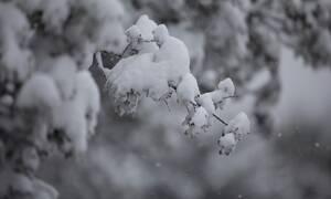 Μερομήνια 2019: Έρχεται βαρυχειμωνιά με ακραία καιρικά φαινόμενα (pics)