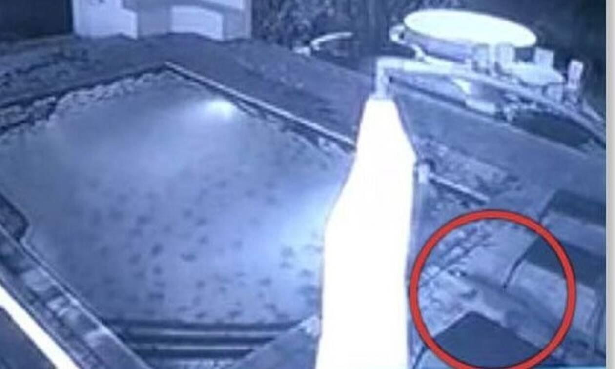 Κροκόδειλος επιτίθεται σε γυναίκα μέσα σε πισίνα - Συγκλονιστικό βίντεο