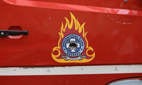 Φωτιά: Πέντε πυρκαγιές στην Κεφαλονιά μέσα σε λίγη ώρα