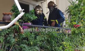Συναγερμός στη Λαμία: Πυρκαγιά σε διαμέρισμα από διαρροή υγραερίου (pics&vid)