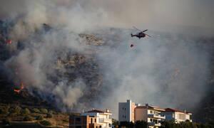 Φωτιά ΤΩΡΑ στο Λαγονήσι - Απειλεί κατοικημένη περιοχή