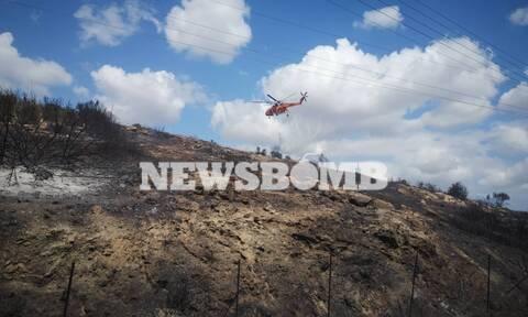 Φωτιά ΤΩΡΑ στο Λαγονήσι - Εκκενώνονται σπίτια