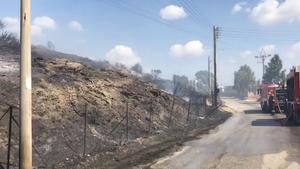 Φωτιά ΤΩΡΑ στο Λαγονήσι: Οι πρώτες φωτογραφίες από το σημείο