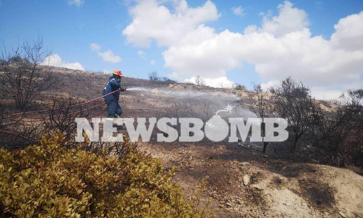 Φωτιά ΤΩΡΑ στο Λαγονήσι: Σε ύφεση το μέτωπο – Αποκαταστάθηκε η κυκλοφορία (pics&vids)