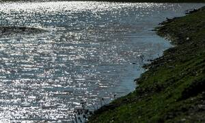 ΣΟΚ στα Τρίκαλα: Νεκρά ψάρια ξεβράζει ο Πηνειός (pics)