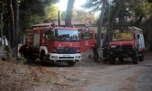 Προσοχή! Στο «κόκκινο» 8 περιφέρειες για πυρκαγιές - Θυελλώδεις βοριάδες εως 9 μποφόρ
