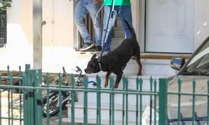 Τραγωδία Γλυκά Νερά: Έτσι σκότωσε ο σκύλος το βρέφος - Συγκλονίζει ο ιατροδικαστής