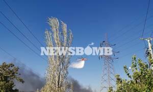 Πύρινος εφιάλτης σε Μενίδι και Κεφαλονιά: Κοντά σε σπίτια οι φλόγες - Εκκενώθηκαν ξενοδοχεία