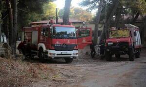 Φωτιά ΤΩΡΑ: Πύρινα μέτωπα σε 'Εβρο και Λουτράκι (pics-vid)