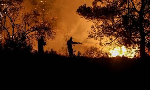 Φωτιά ΤΩΡΑ στα Μέγαρα - Συναγερμός στην Πυροσβεστική