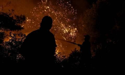 Πυρκαγιά στην Πύλο Μεσσηνίας