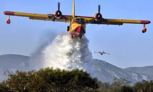 Πύρινη κόλαση στο Λουτράκι: Ολονύχτια μάχη με τις φλόγες - Συνεχείς αναζωπυρώσεις και εικόνες τρόμου