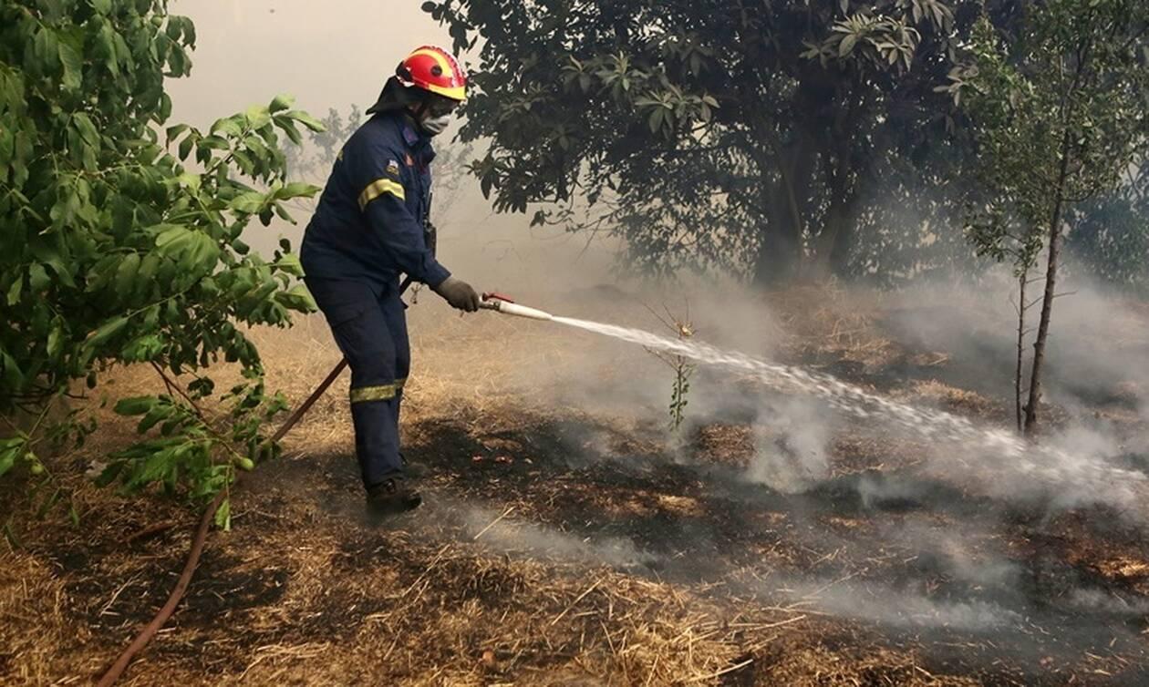 Φωτιά ΤΩΡΑ: Μεγάλη πυρκαγιά στη Ζάκυνθο