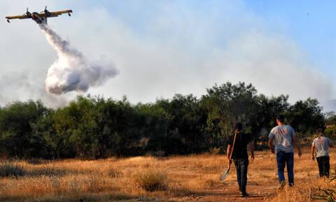 Μάχη με τις φλόγες στο Λουτράκι: Συνεχείς αναζωπυρώσεις και θυελλώδεις άνεμοι