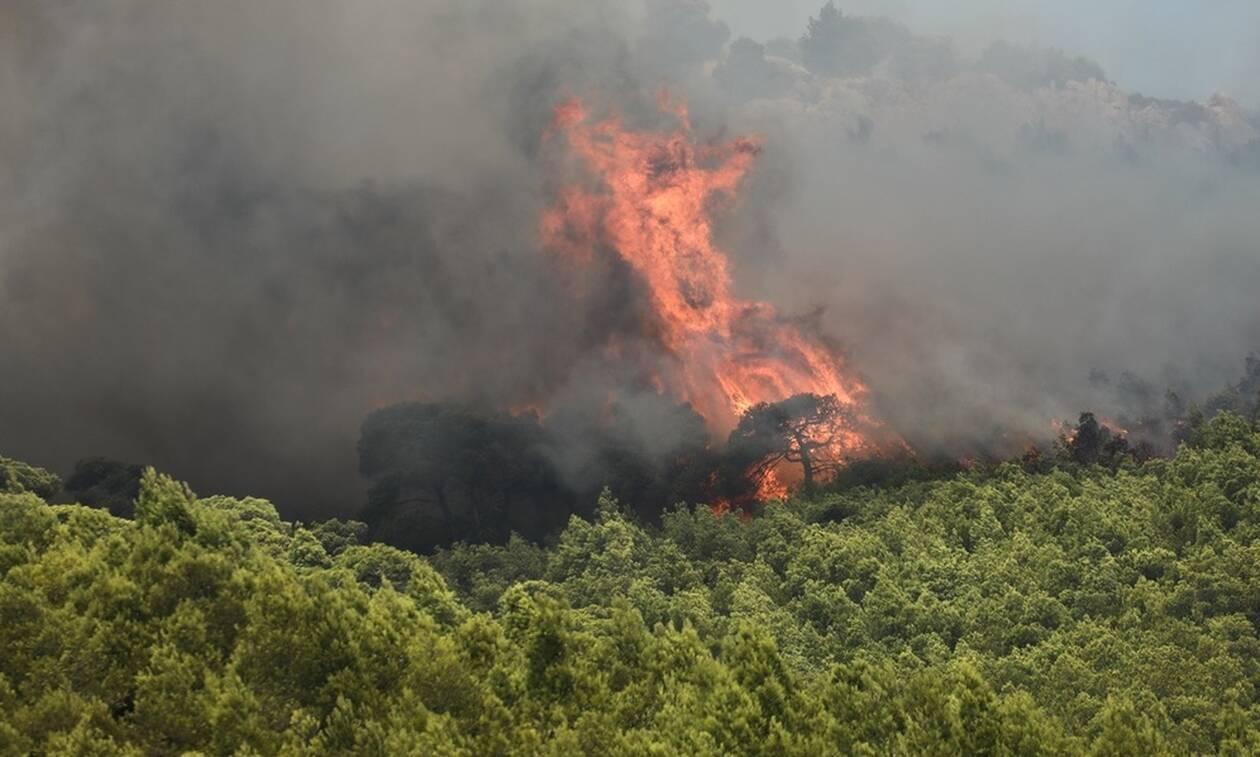 «Κόλαση» φωτιάς στο Λουτράκι: Αποπνικτική ατμόσφαιρα από τους καπνούς - Διεκόπη η κυκλοφορία (pics)