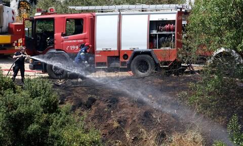 Φωτιά ΤΩΡΑ στην Ηλεία
