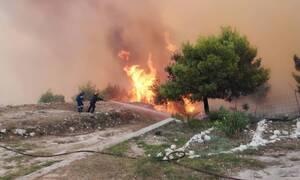 Φωτιά Ζάκυνθος: Η εικόνα από δορυφόρο που κόβει την ανάσα (pics)