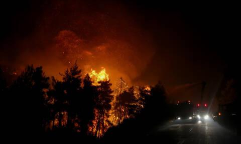 Φωτιά Ζάκυνθος: Νύχτα «κόλαση» στο νησί - «Γλύφουν» σπίτια οι φλόγες (pics+vids)