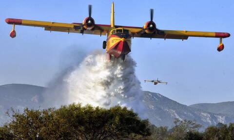 Φωτιά Ζάκυνθος: Ολονύχτια μάχη με τις φλόγες - Όλοι περιμένουν τα εναέρια μέσα (pics+vids)