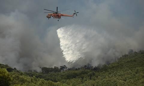 Φωτιά Λουτράκι: Κρανίου τόπος το καταπράσινο βουνό - Αγωνία για τις αναζωπυρώσεις
