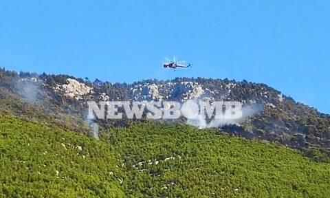 Φωτιά Λουτράκι: Σε ύφεση η μεγάλη πυρκαγιά - Στάχτη χιλιάδες στρέμματα δάσους (pics&vids)