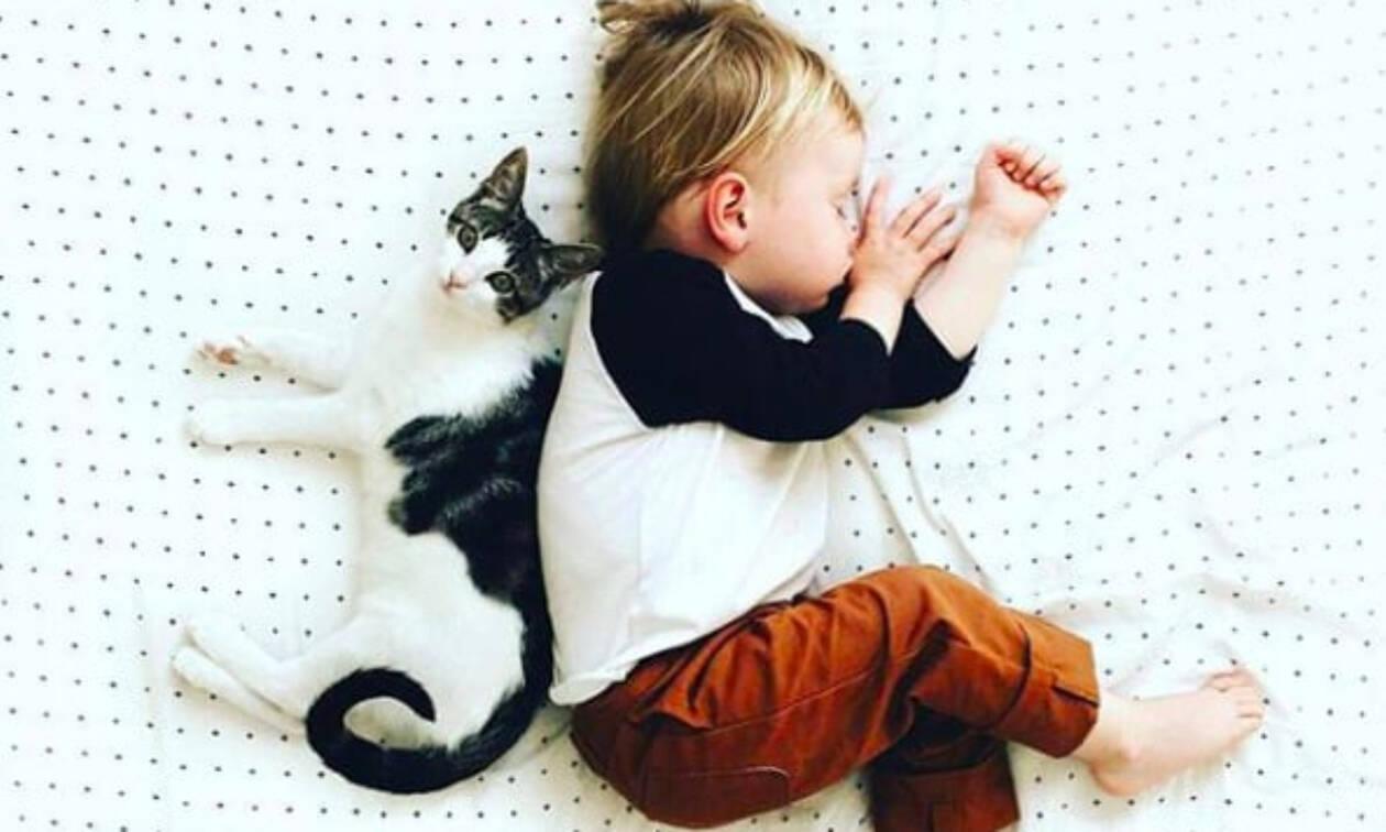 Οι γάτες είναι το τέλειο κατοικίδιο για μωρά και οι φώτο το αποδεικνύουν (pics)
