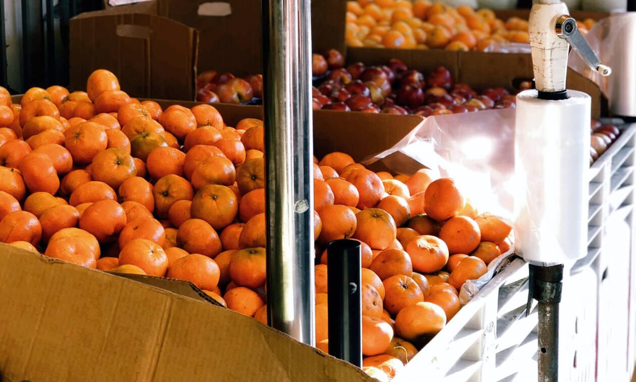 Δεν έφαγες ολόκληρο το φρούτο σου; Δες πώς θα το «συντηρήσεις»