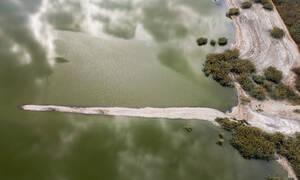 Συγκλονιστικές εικόνες: Η λίμνη Κορώνεια «πεθαίνει» - Χιλιάδες νεκρά ψάρια στις όχθες της
