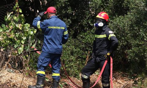 Φωτιά: Υπό έλεγχο η πυρκαγιά στο Σοφικό Κορίνθου