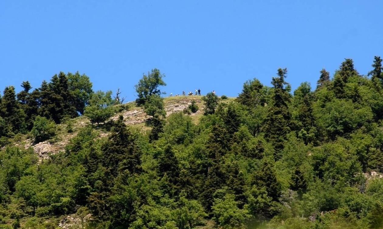 Θρίλερ στον Όλυμπο: Μεγάλη επιχείρηση σοβαρά τραυματισμένου ορειβάτη