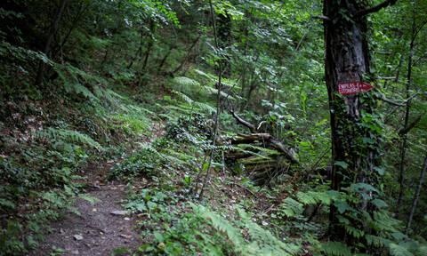 Τραγωδία στον Όλυμπο: Νεκρός ορειβάτης