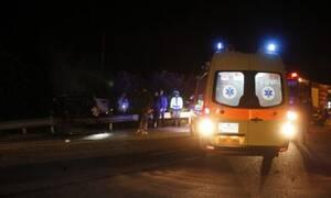 Τρίκαλα: Αυτοκίνητο καρφώθηκε πάνω σε... αγριογούρουνα