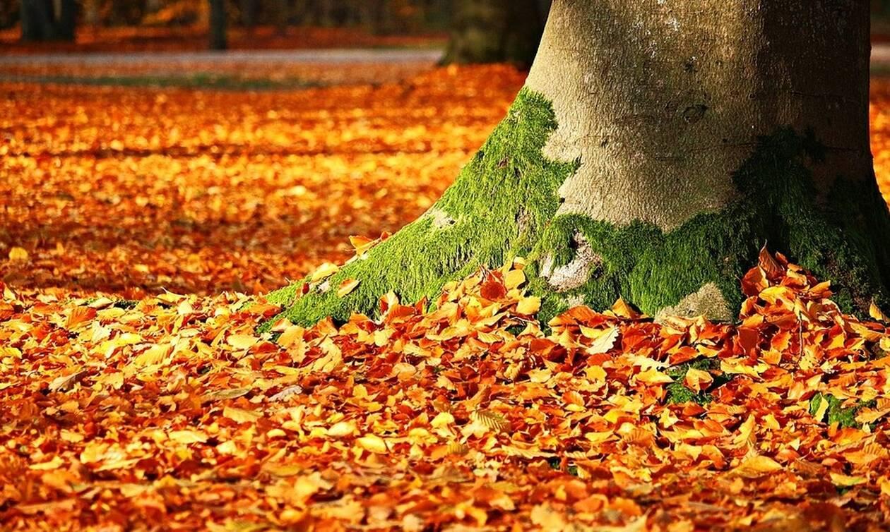 Φθινόπωρο: Ήρθε και επίσημα - Σιγά σιγά μικραίνει η μέρα