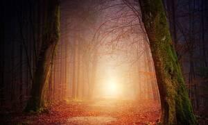 Φθινόπωρο: Δείτε πόσα λεπτά ημέρας χάνουμε μέχρι τις 22 Δεκεμβρίου