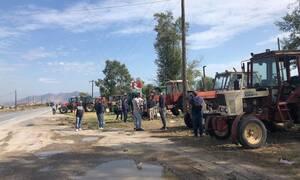 Λάρισα: Βγήκαν στους δρόμους οι αγρότες - Διαμαρτύρονται για τις τιμές στο βαμβάκι