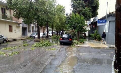 ΤΩΡΑ: Η κακοκαιρία «χτυπά» την Καλαμάτα  - Πτώση κολώνας και δέντρων