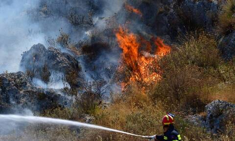 Φωτιά ΤΩΡΑ στο Κρυονέρι