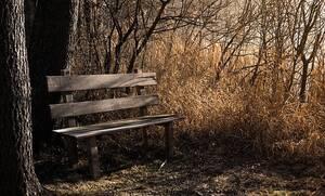Εύβοια: Κάθισε να ξεκουραστεί στο παγκάκι και όταν κατάλαβε τι συμβαίνει ούρλιαξε